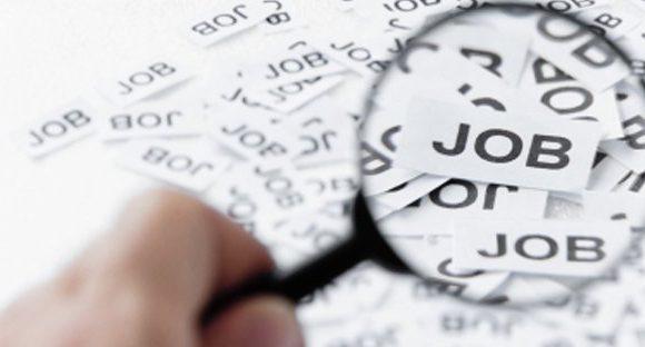 Cercare lavoro, occhio alle truffe. Come orientarsi tra gli annunci di ricerca